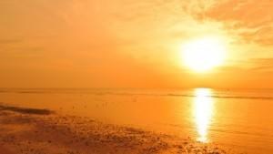 Ayurveda e Yoga per affrontare la stagione delfuoco
